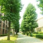 英語塾LACOMS|大学受験に合格したOBからのメッセージ【其の二】